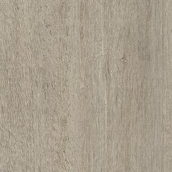 Rovere Aalst 6566